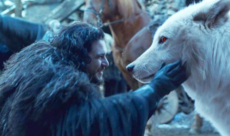 Game of Thrones Jon Snow ending: We were all WRONG about this prophecy and Ghost