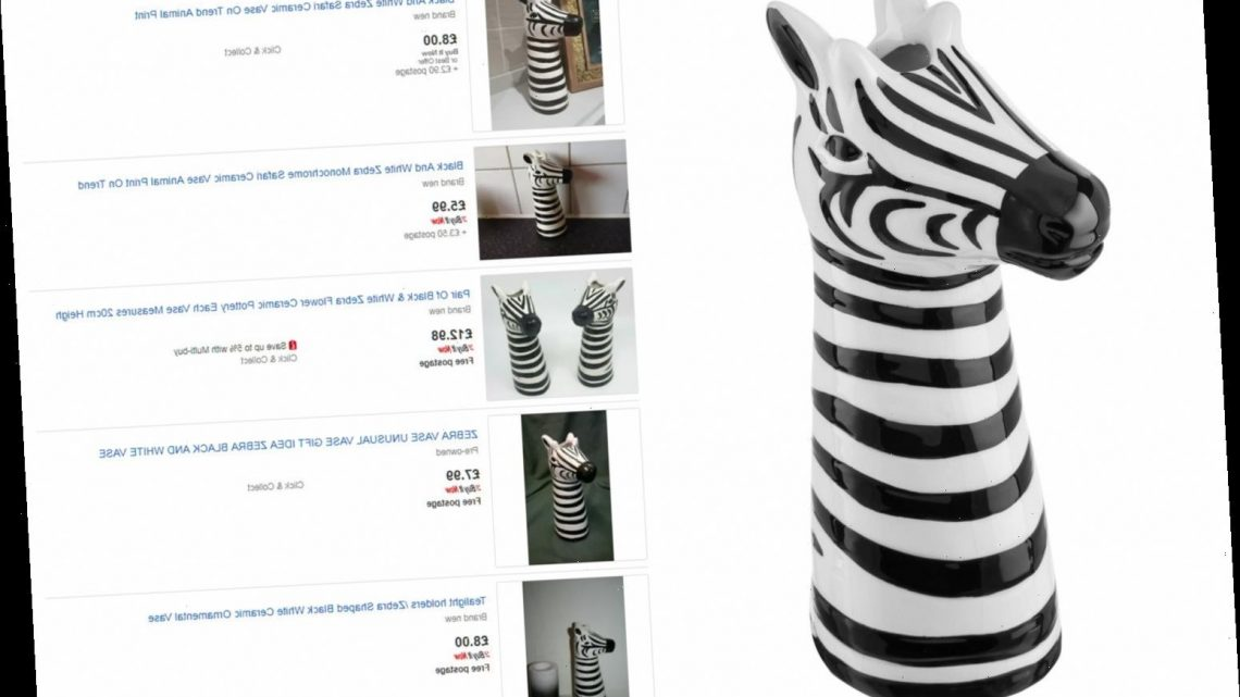 Cheeky eBay sellers flogging Poundland vases for TEN TIMES their original price – The Sun