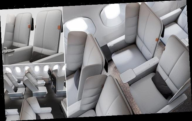New economy seat with padded wings for passengers to lean on unveiled