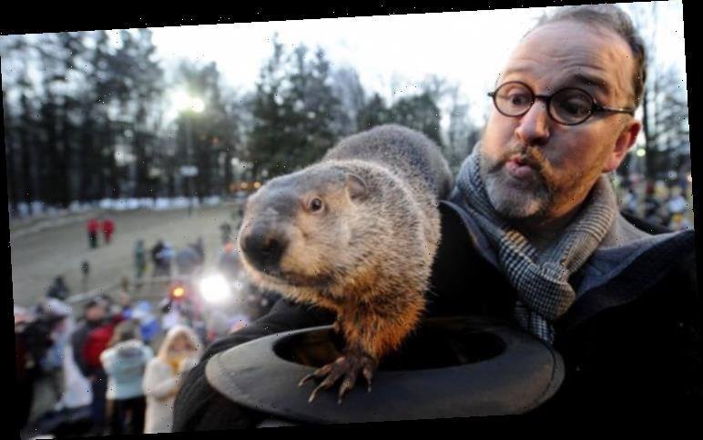Groundhog Day 2020 weather forecast: Will USA see six more weeks of WINTER?