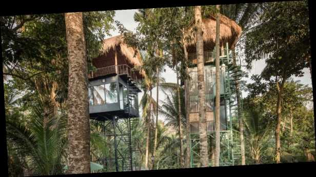 You can now sleep in treehouses hidden in the jungle and they're pretty amazing
