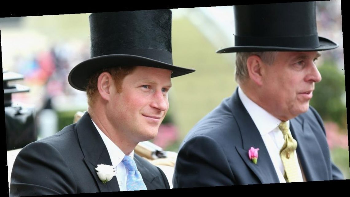Prince Harry's blunt remark about Prince Andrew friendship with Jeffrey Epstein
