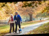 Exercise for elderly: Are over 70s allowed out for exercise?
