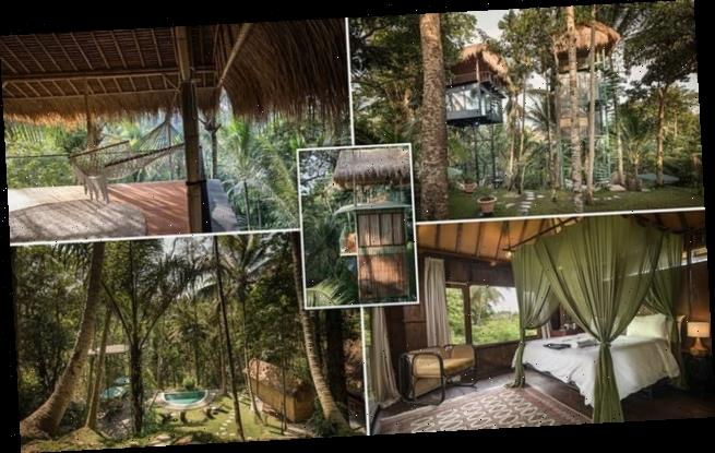 Taking treehouse holidays to another level!