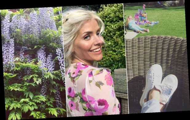 Inside Holly Willoughby's stunning garden at £3million London home where she has spent the heatwave
