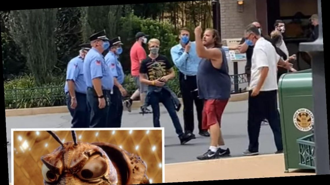 Anti-Masker Cites A Bug's Life As He is Hauled Out of Disney Park