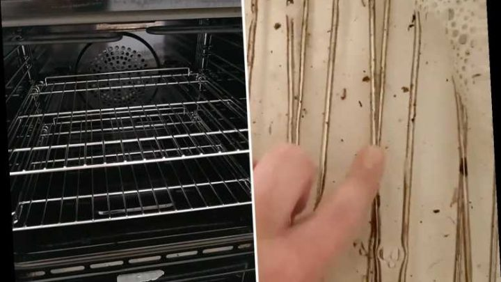 Cleaning fanatics are using washing powder to get grim oven racks sparkling like new and it takes NO effort