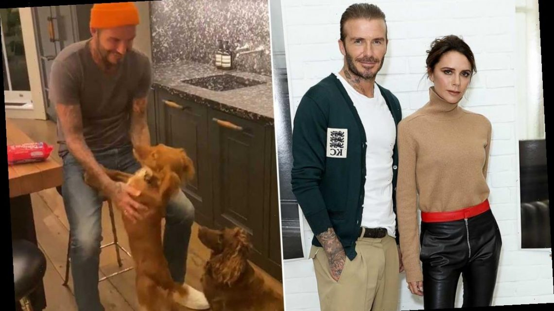 David and Victoria Beckham film inside jaw-dropping £31million house