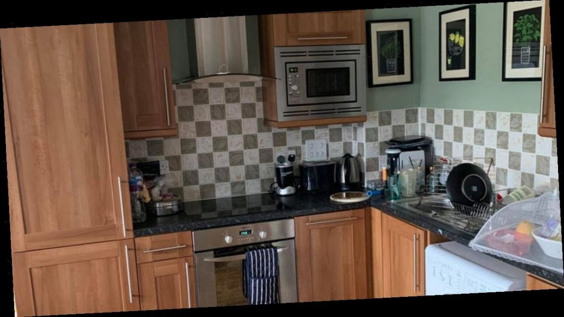 Mum gives kitchen a grey DIY makeover for just £45 using Frenchic paint