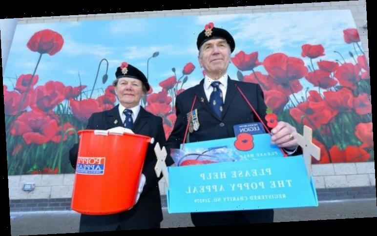 How to buy poppies for Remembrance Day