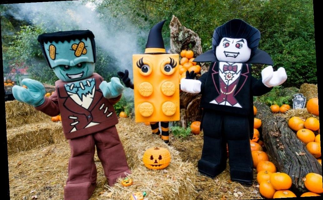 Half term activities for October 2020 from £3pp – things to do with the family from Gruffalo Walks to Halloween events