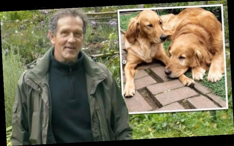 Monty Don moves fans as he finally details own garden layout and where dog Nigel's buried