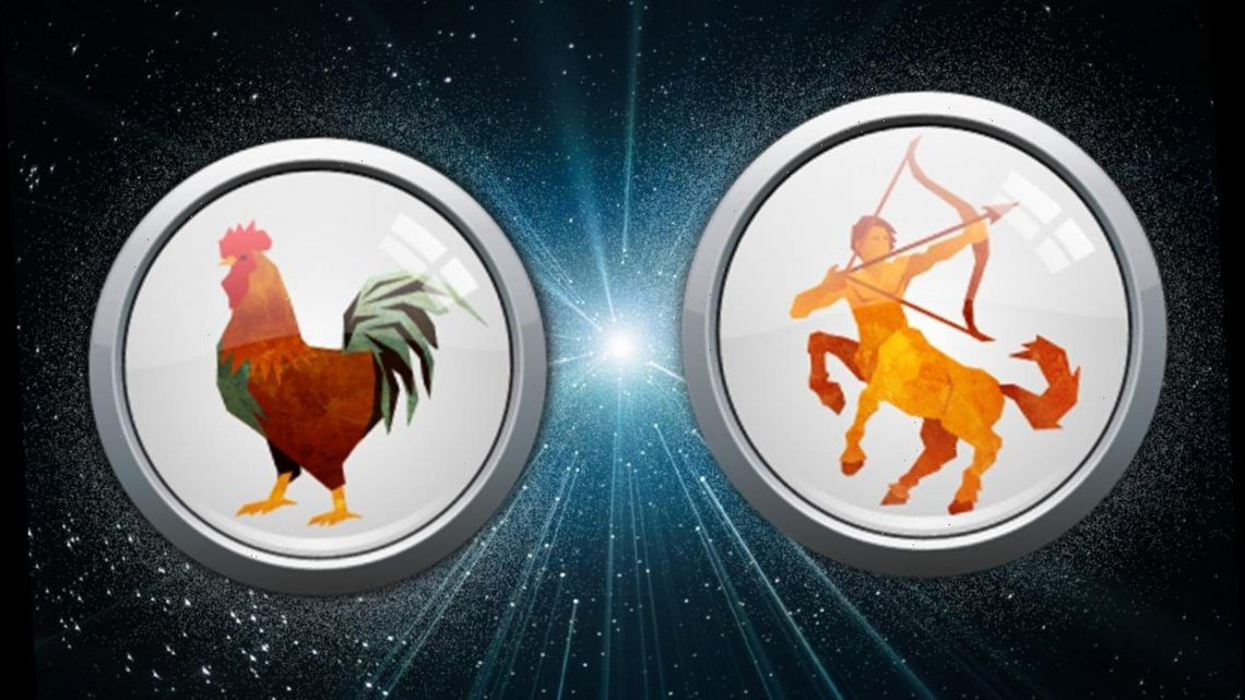 Sagittarius Rooster Monthly horoscope: What your Chinese and Western zodiac sign has in store for you