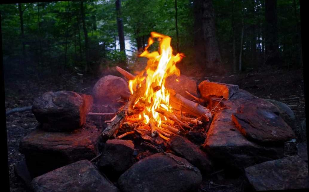 Ga. Man, 71, Dies After Falling Into Campfire in 'Freak Accident'