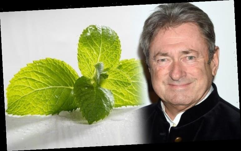 Alan Titchmarsh: Gardening expert explains how to 'cheat' while growing winter mint