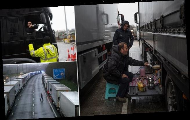 JANE FRYER highlights plight of lorry drivers stuck in Dover queues