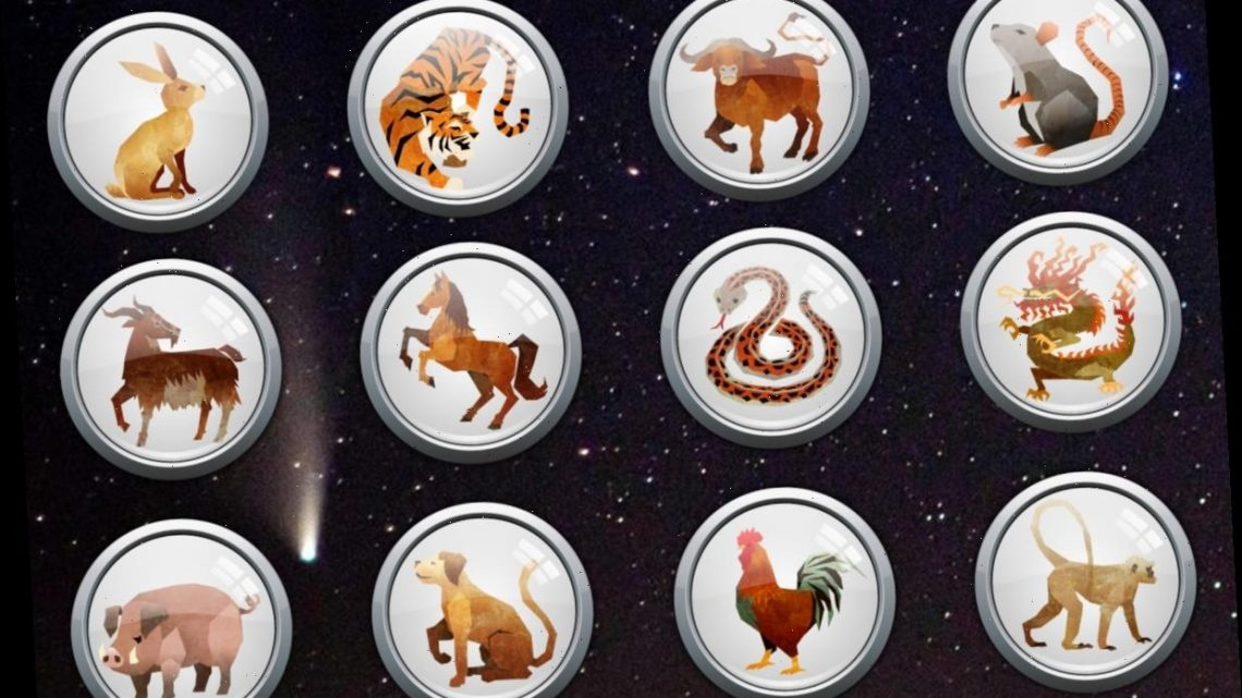 Daily Chinese Horoscope Thursday December 31: What your zodiac sign has in store for you today