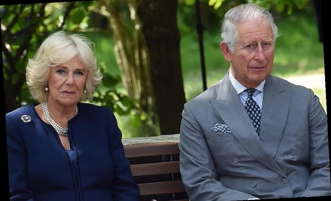 After Fan Backlash Over Princess Diana, Prince Charles and Camilla Were Forced to Respond This Way on Social Media