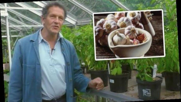 Monty Don: Gardening expert shares how to keep your garlic fresh 'for up to a year'