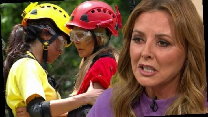 Carol Vorderman brands I'm A Celebrity co-star 'a bl**dy nightmare' after pregnancy post