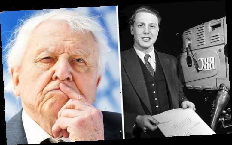 David Attenborough warned BBC against lowering TV licence fee: 'That's the danger!'