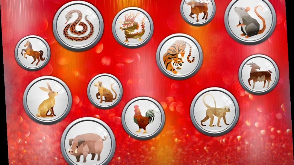 Daily Chinese Horoscope Wednesday January 6: What your zodiac sign has in store for you today