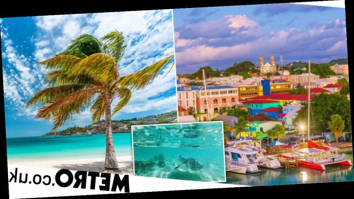 Why you should swap the office at home for a workation in Antigua post-lockdown