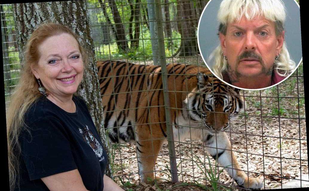 Carole Baskin elated Joe Exotic not pardoned: 'He belongs in a cage'