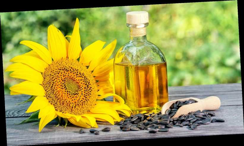 How Sunflower Oil Could Help Your Hair – The List