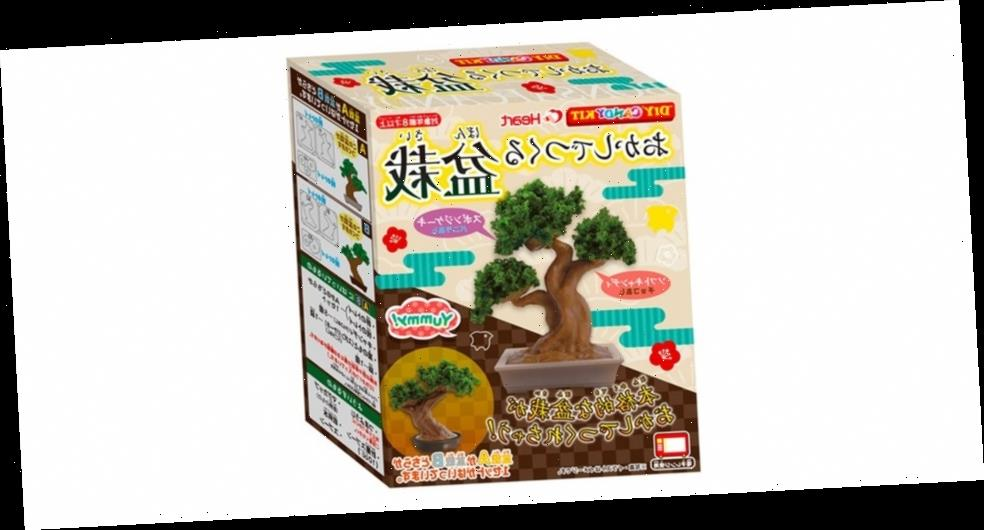 This DIY Kit Lets You Make, Groom and Eat a Chocolate Bonsai Tree