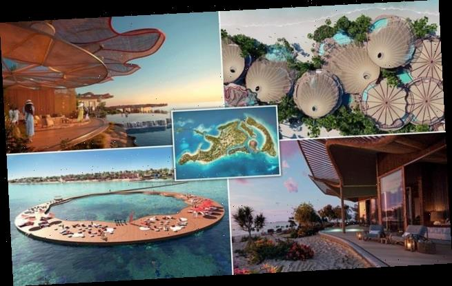 Designs revealed for gateway island to Saudi Arabia's 'giga-resort'