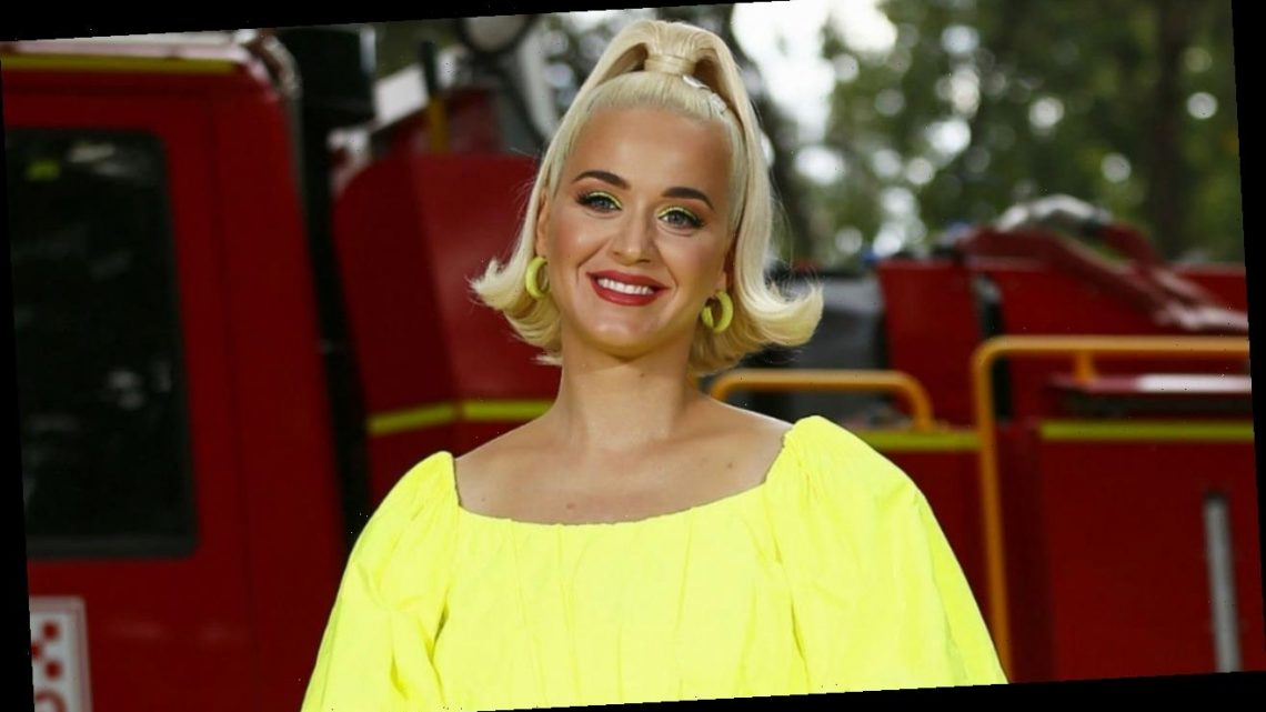 Katy Perry Wants More Children After Welcoming Daughter Daisy