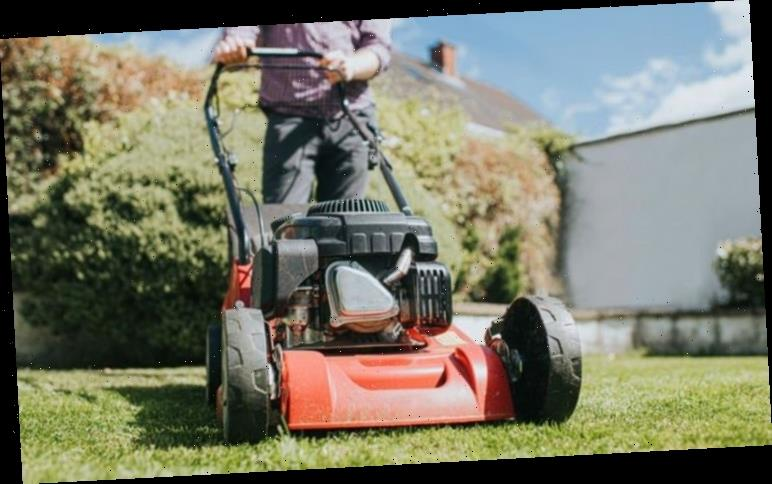Grass cutting: When is the perfect time to cut your grass after winter?