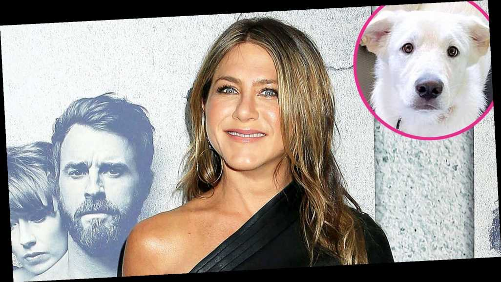 Jennifer Aniston Hits the Yoga Mat With Her Dog Lord Chesterfield