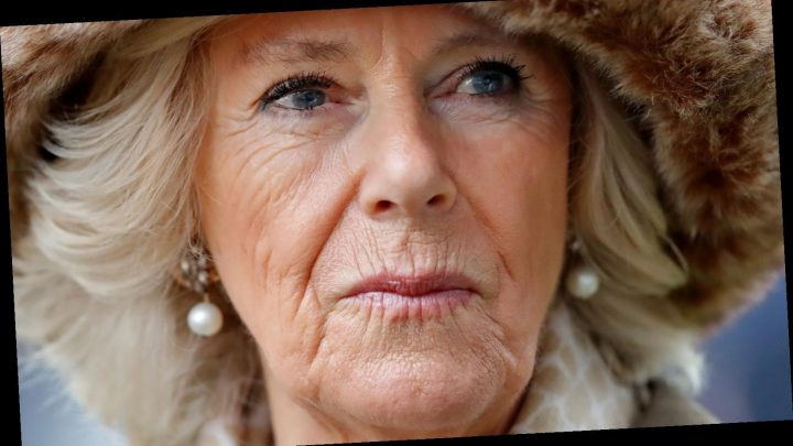 Duchess Camilla Gives An Update On Prince Philip's Health