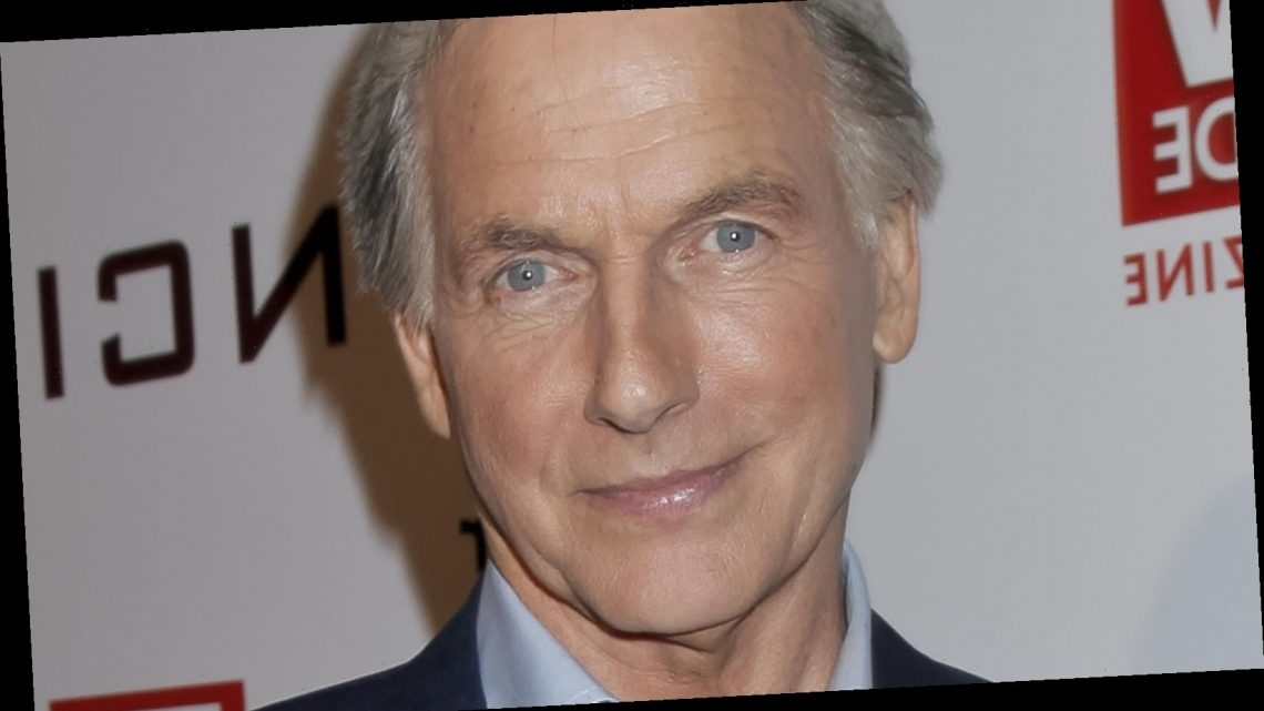 Mark Harmon Is Getting A Real-Life Family Member As NCIS Co-Star