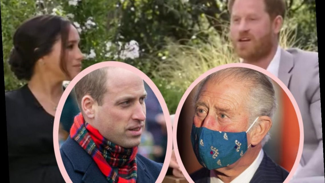 Prince Charles 'Will Not Be Drawn Into' Interview Drama As 'Angry' Prince William 'Will Bear A Grudge 'For A Very Long Time' – MORE DETAILS