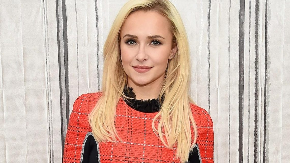 Hayden Panettiere's Ex Receives 45 Day Jail Sentence After Multiple Domestic Violence Allegations