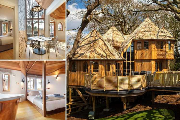 Incredible new fairytale treehouses in the New Forest at Shorefield Country Park- near Peppa Pig World