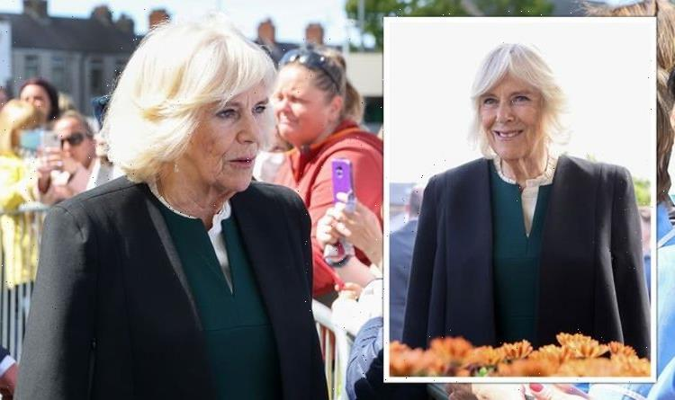 'Smart' Camilla gives sweet nod to Ireland in 'elegant' green dress for visit with Charles