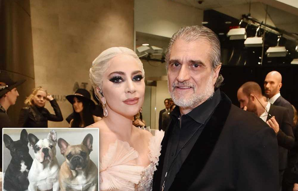Lady Gaga's dad says he never believed 'unusual' story of woman who found dogs