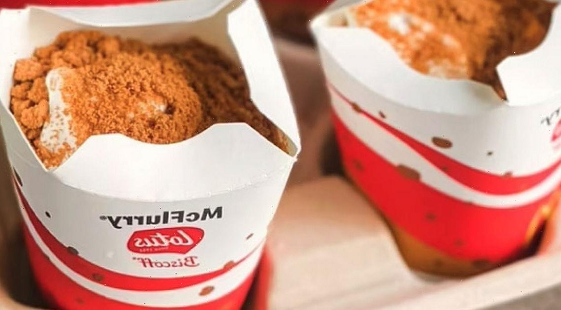 McDonald's customers beg for Lotus Biscoff McFlurry flavour to launch in UK