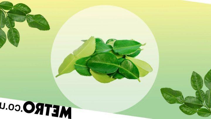 Waitrose renames Kaffir lime leaves because word was historically a racial slur