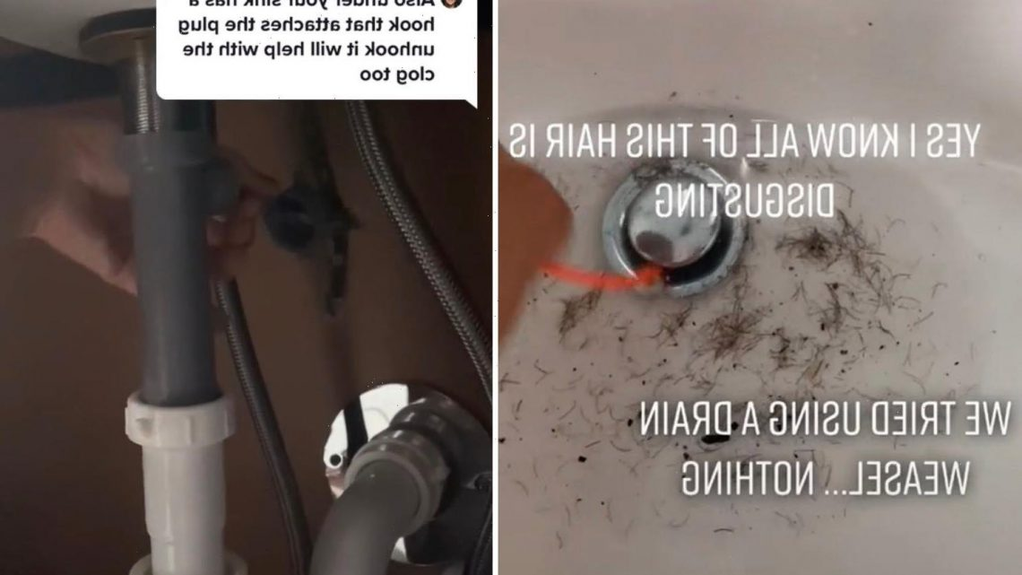 Woman reveals simple hack to get sink draining again after horrendous hair build-up leaves it clogged for a YEAR