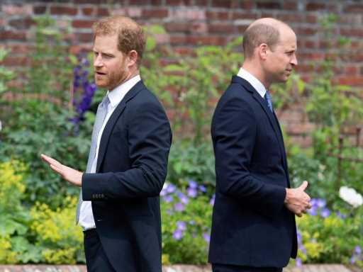 Prince Harry Reportedly Treated Like an Outsider During Royal Reunion with Brother Prince William