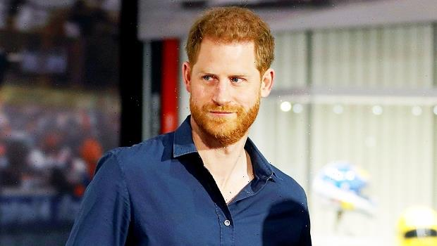 Prince Harry Writing Memoir About Royal Family Life: It's An 'Honest & Captivating Personal Portrait'