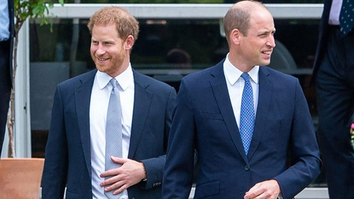 Prince Harry's New Memoir Isn't Helping Rift With Prince William