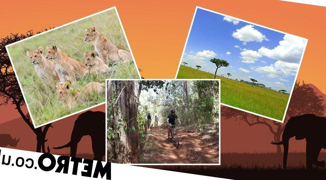 The best safari experiences in Kenya from wildlife photography to bike tours