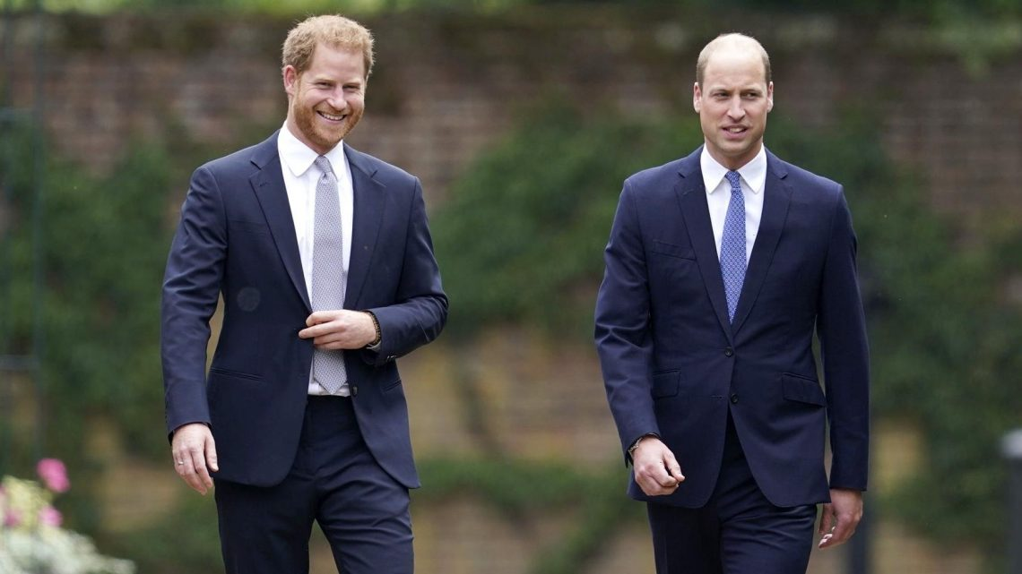 William and Harry Put on United Front for Diana Statue Unveiling: Statement