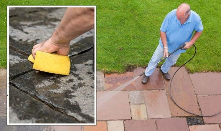 'Stops moss forming!' Mrs Hinch fans share £1 hack for cleaning garden patios